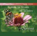Mp3 - Realizzare i Sogni dell'Inverno In Primavera