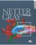 Netter Gray - L'Anatomia - Cofanetto - Libro