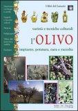 Olivo  - Libro