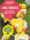 Orchidee - Libro