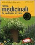 Piante Medicinali da Coltivare in Casa