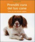 Prenditi Cura del tuo Cane