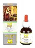 Ribes Nigrum - Soluzione Idrogliceralcolica