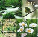 Riquadri - Calendario 2017 - Grande