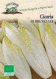 Semi di Cicoria Witloof di Bruxelles - 3 gr - BU053