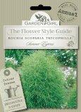 Semi di Kochia Scoparia Trycophilla - Summer Cypress