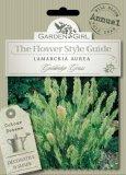Semi di Lamarckia Aurea - Goldentop Grass