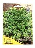 Semi di Lattuga Verde Salad Bowl  - B496-25