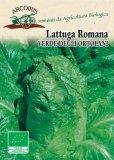 Semi di Lattuga Romana Verde degli Ortolani - 5 gr - BU022