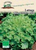 Semi di Lattuga Salad Bowl Verde - 3 gr - BU047