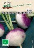 Semi di Rapa di Milano Colletto Viola - 8 gr - BU043