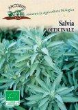 Semi di Salvia Officinale - 3 Gr - BU042