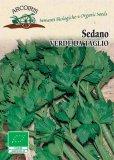 Semi di Sedano Verde da Taglio - 4 gr - BU056