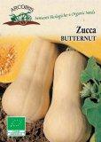 Semi di Zucca Butternut - 4 gr - BU050