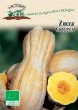 Semi di Zucca Violina - 4 gr - BU038