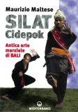 Silat Cidepok  - Libro