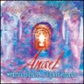 Spiritual Beings on a Human Journey  - CD
