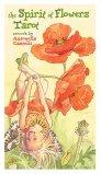 I Tarocchi Floreali — Carte