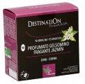 Tè Verde Bio al Gelsomino - n. 118