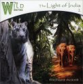 The Light of India  - CD