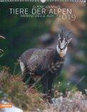 Tiere Der Alpen - Calendario Animali Alpini 2019
