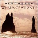 Whales of Atlantis  - CD