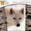 White Wolf Spirit  - CD