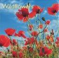 Wildflowers - Calendario 2018