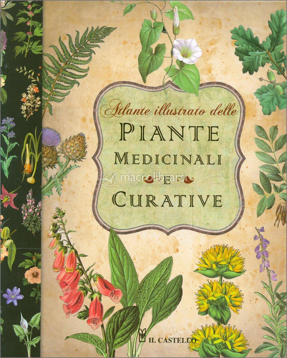 Piante Medicinale : Atlante illustrato delle piante medicinali e curative