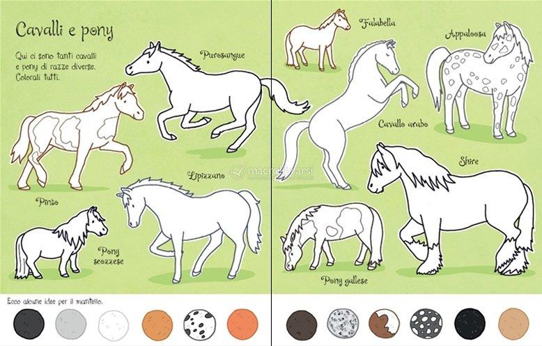 Cavalli e pony da colorare for Disegni da colorare dei cavalli
