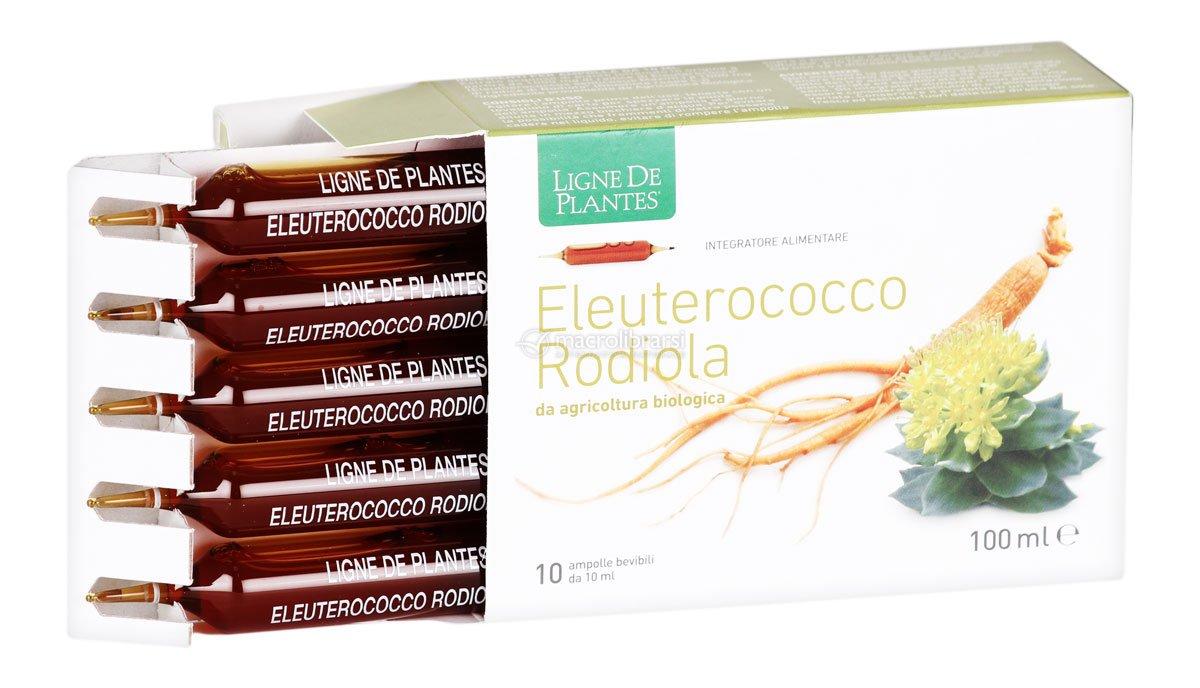 Eleuterococco rodiola ampolle ligne de plantes for Ligne de plantes