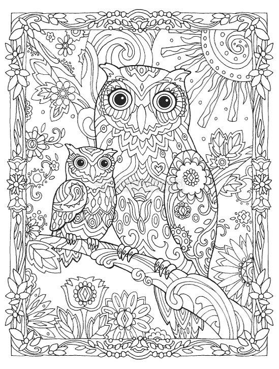 disegni da colorare sui gufi
