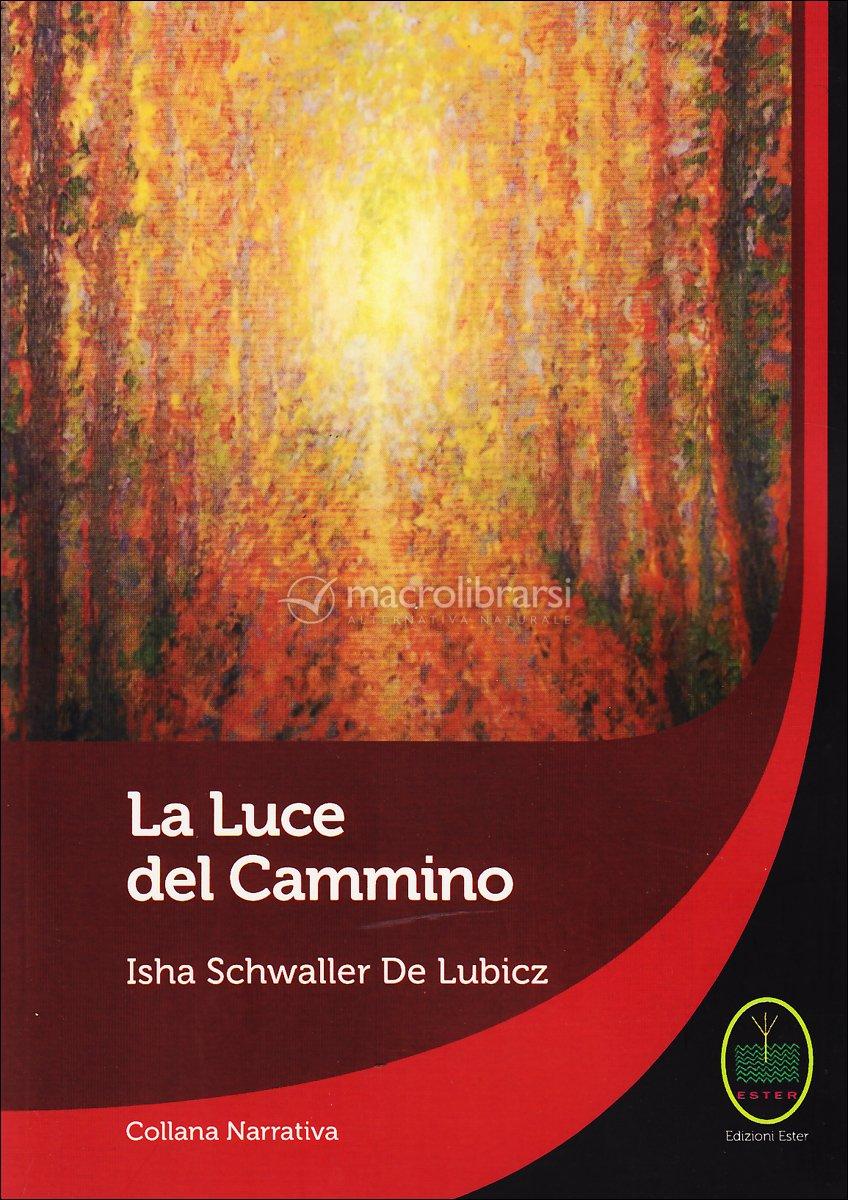 download Sozialraum: Eine Einführung 2007