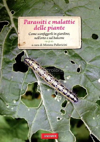 Parassiti e malattie delle piante mimma pallavicini for Parassiti piante