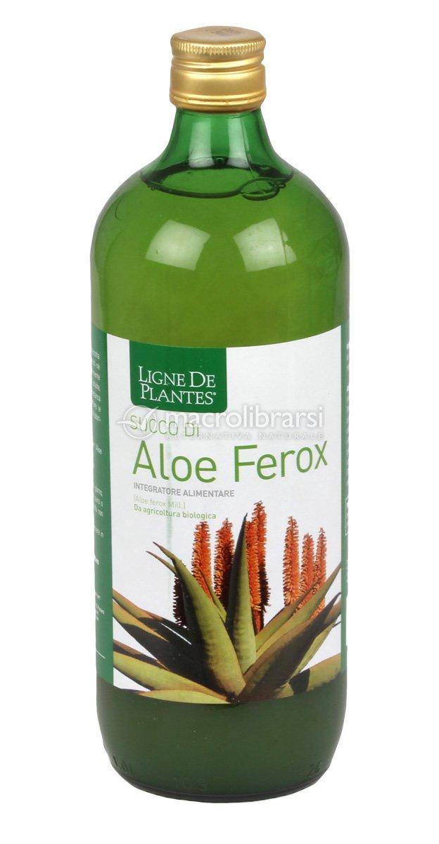 Succo di aloe ferox ligne de plantes for Ligne de plantes