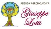 Azienda Agrobiologica di Giuseppe Lotti