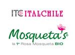Italchile