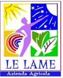 Le Lame