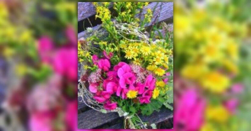10 erbe e fiori per alleviare il mal di testa
