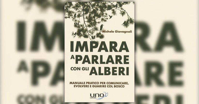 """21 foglie per avvicinarsi al mondo vegetale - Estratto da """"Impara a Parlare con gli Alberi"""""""