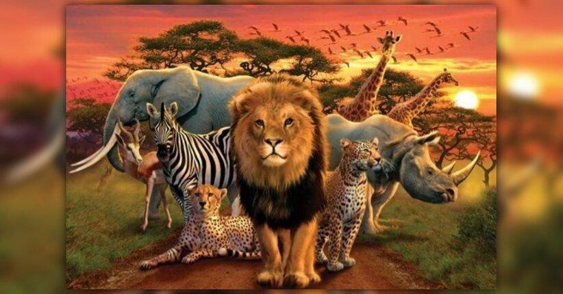 Gli animali nel Tempo dell'Uno