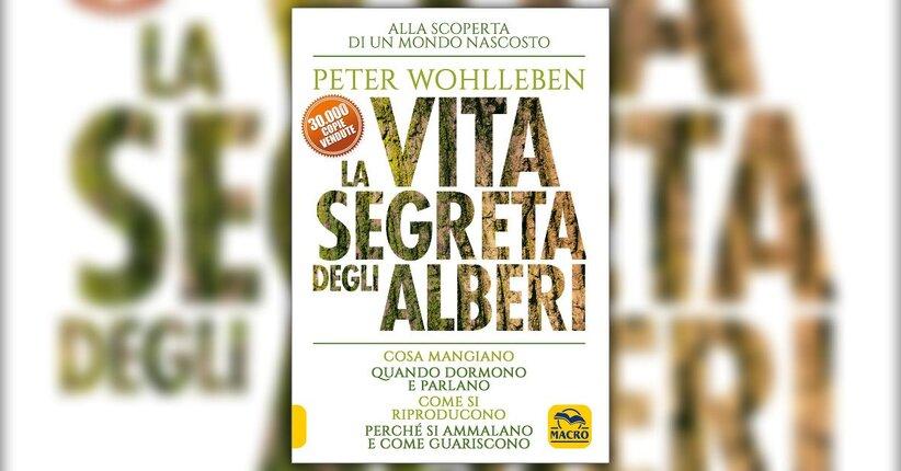 """Amore - Estratto da """"La Vita Segreta degli Alberi"""" libro di Peter Wohlleben"""