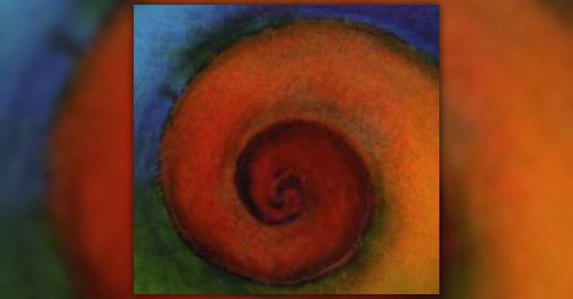 Anteprima La Spirale delle Emozioni LIBRO di Elena Puntaroli
