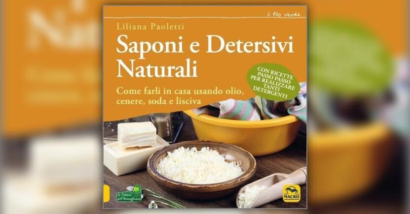 Anteprima Saponi e Detersivi Naturali LIBRO di Liliana Paoletti