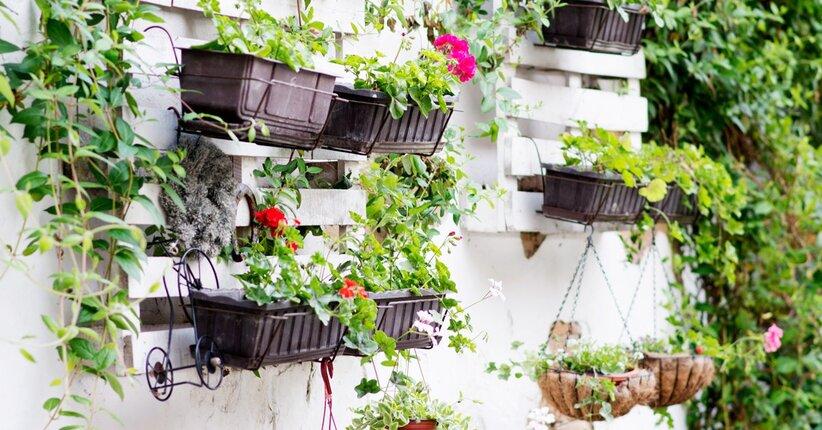 Autoproduzione e giardinaggio