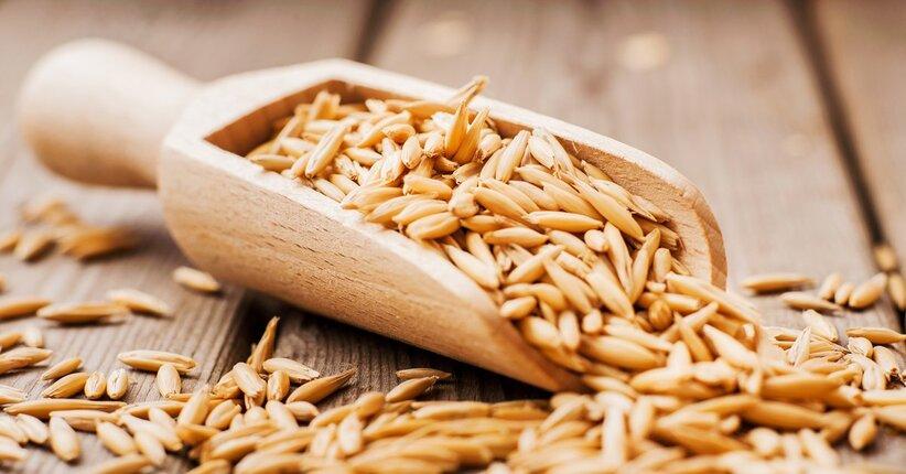 Avena: benefici e ricette di un cereale antico