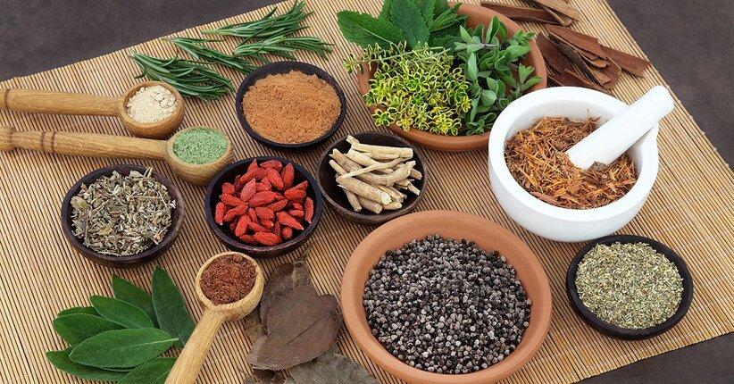Ayurveda-vet: curare i nostri animali secondo la medicina indiana