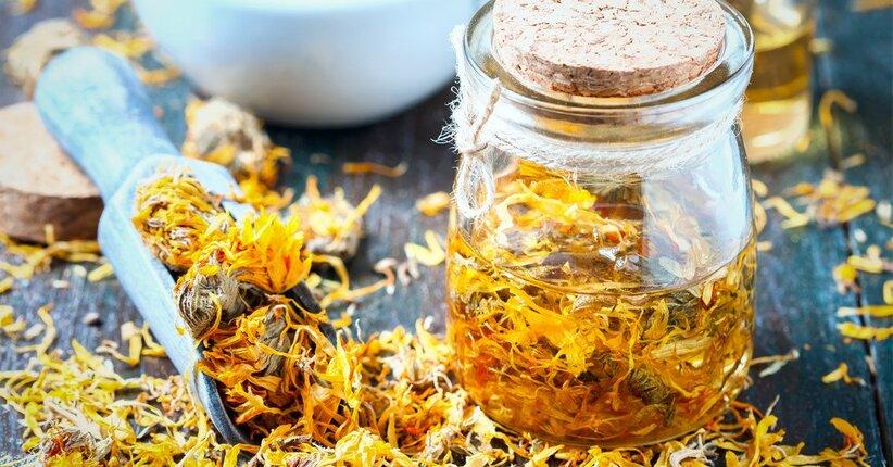 Calendula: proprietà ed utilizzo sotto forma di crema, tintura madre, o tisana