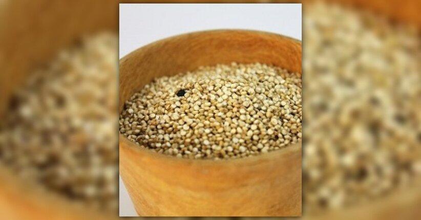 Cereale non cereale: l'amaranto