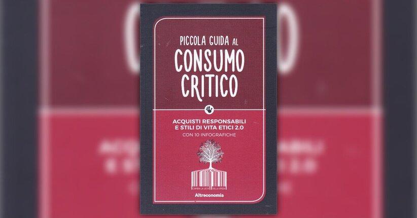 Che cos'è il consumo critico?